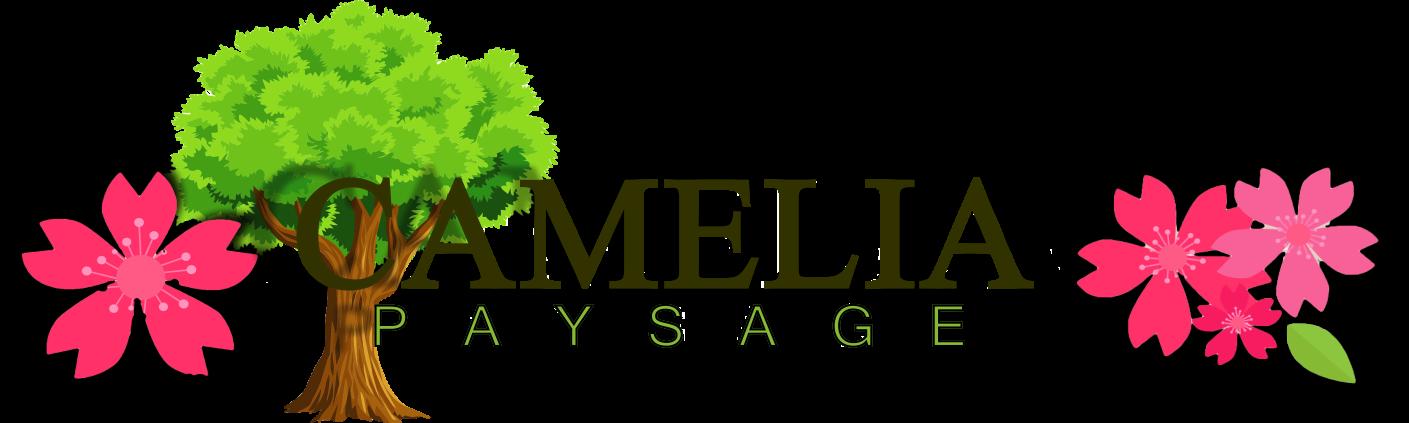 Camelia Paysage – Robin Knoepper